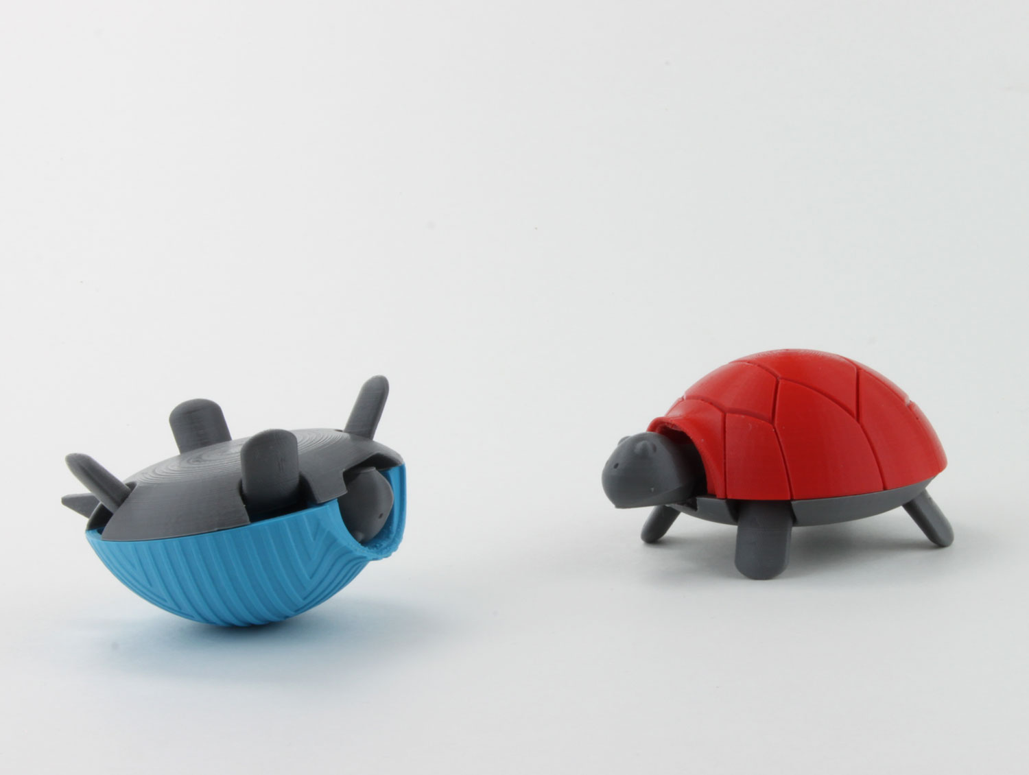 upside down 3d printed squishy turtle nature animal toy kids project design colorful